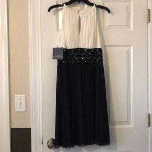NWT—Black & Ivory Cocktail Dress